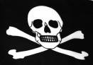 Piratflagga 150x240 cm