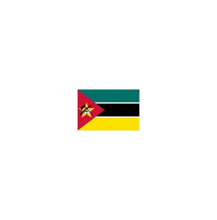 Mocambique 24 cm Bordsflagga