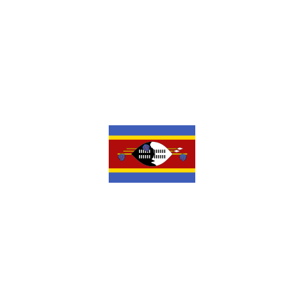 Swaziland 24 cm Bordsflagga