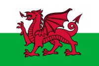 Wales 24 cm Bordsflagga